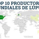 Mayores productores mundiales de Lúpulo