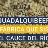 Cerveza Artesana Gudalquibeer