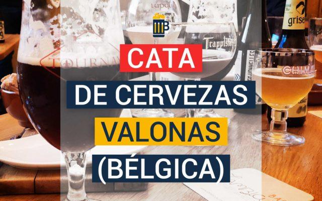 Cata de cervezas originarias de Valonia, la región sur de Bélgica.