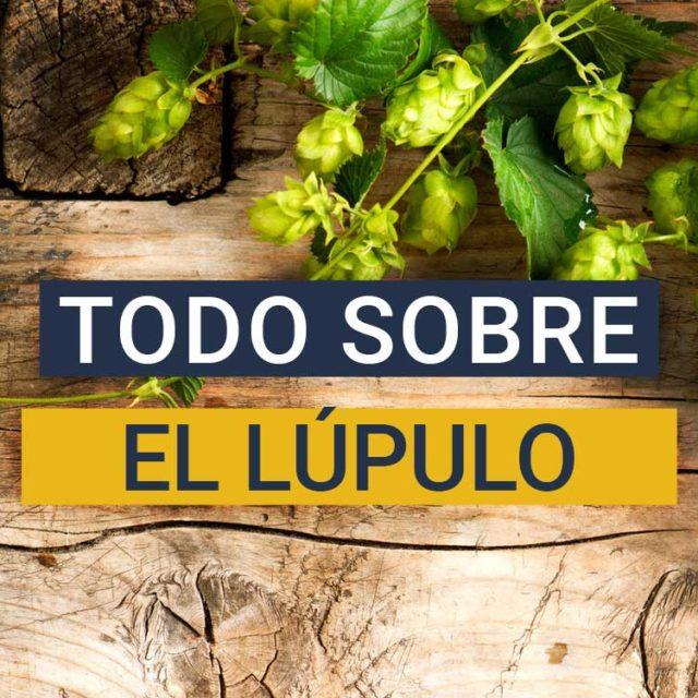 https://www.beersandtrips.com/wp-content/uploads/2021/03/que_es_el_lupulo-640x640.jpg