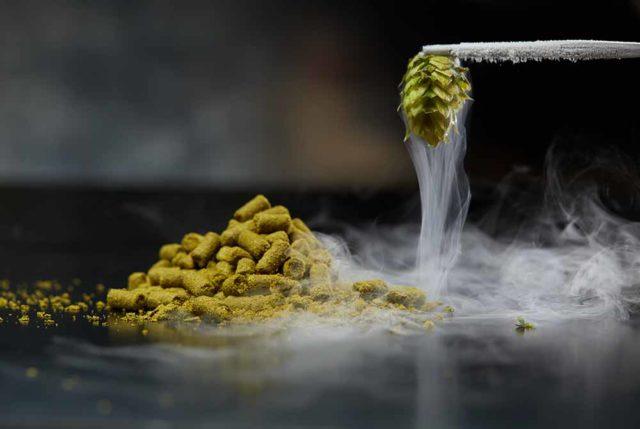 ¿Qué son los Cryo Hops? Uso en la cerveza artesanal